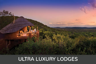 ultra luxury lodges Madikwe Game Reserve